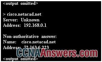 What command was used to resolve a given host name by querying the name servers?