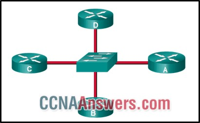 Which conclusion can be drawn from this OSPF multiaccess network?