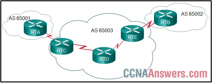 All routers are successfully running the BGP routing protocol