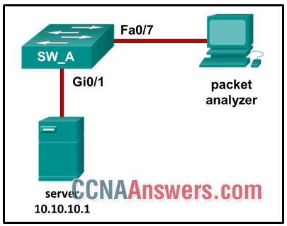 Which command or set of commands will configure SW_A to copy all traffic for the server to the packet analyzer?