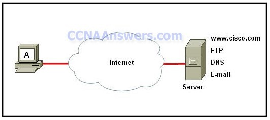 CCNA 1 Practice Final Exam V4.0 Answers