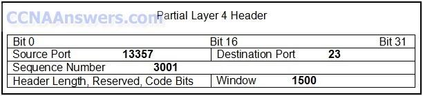 Partial Layer 4 Header