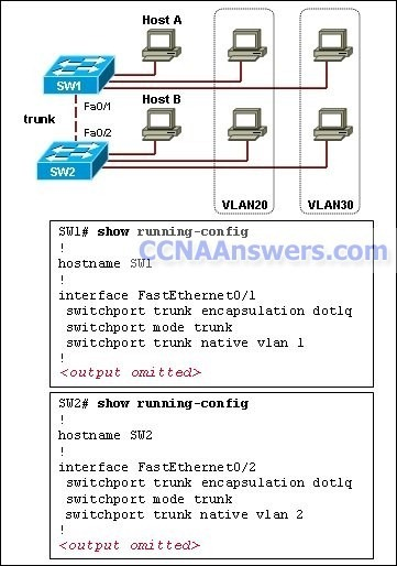 Configure the same native VLAN on both ends of the trunk thumb CCNA 3 Final Exam Answers 2012