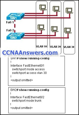 Hosts that are connected to switch SW1 are not able to communicate with hosts in the same VLAN that are connected to switch SW2
