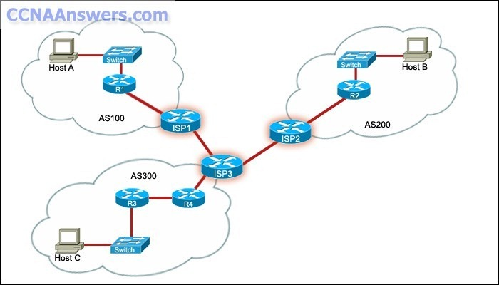 DsmbISP Final Exam - CCNA Discovery Working at a Small-to-Medium Business or ISP (Version 4.1)