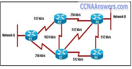 CCNA Discovery 3 Chapter 5 v4.0