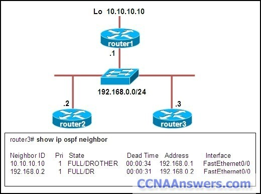 What are the DR and the BDR on the network