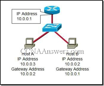 CCNA 1 Chapter 10 V4.0 Answers (4)