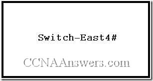 CCNA 1 Chapter 11 V4.0 Answers (4)