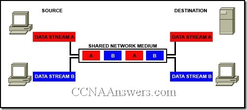 CCNA 1 Chapter 2 (3)
