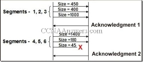 CCNA 1 Chapter 4 (4)