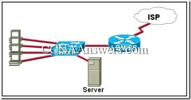 CCNA 1 Chapter 6 (2)