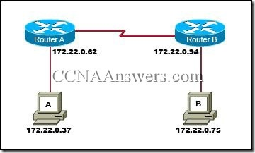 CCNA 1 Chapter 6 (3)