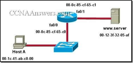 CCNA 1 Chapter 7 V4.0 Answers