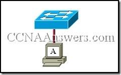 CCNA 1 Chapter 9 V4.0 Answers (1)