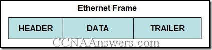 CCNA 1 Chapter 9 V4.0 Answers (4)