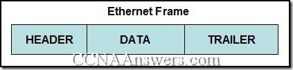 CCNA 1 Chapter 9 V4.0 Answers (4)