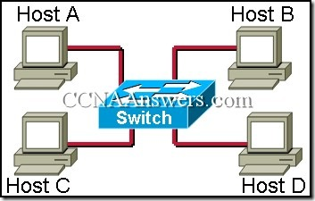 CCNA 1 Final Exam Answers V3.1 (12)