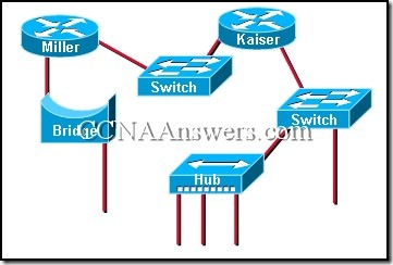 CCNA 1 Final Exam Answers V3.1 (13)