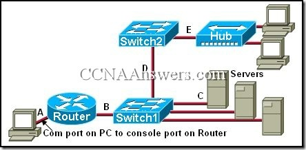 CCNA 1 Final Exam Answers V3.1 (15)
