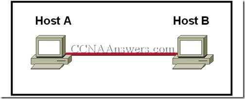 CCNA 1 Final Exam Answers V3.1 (17)