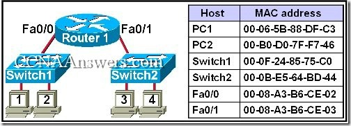 CCNA 1 Final Exam Answers V3.1 (18)