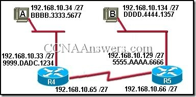 CCNA 1 Final Exam Answers V3.1 (2)