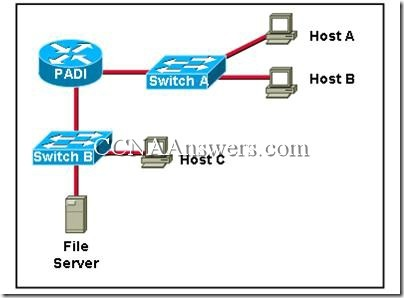CCNA 1 Final Exam Answers V3.1 (3)
