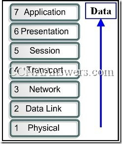 CCNA 1 Final Exam Answers V3.1 (4)