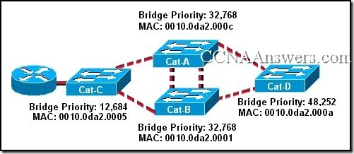 CCNA 1 Final Exam V4.0 Answers 12