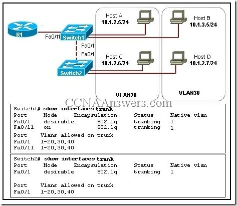 CCNA 1 Final Exam V4.0 Answers 15