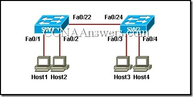 CCNA 1 Final Exam V4.0 Answers 9