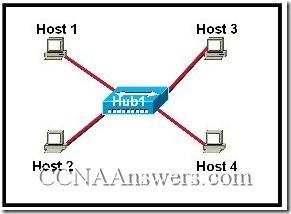 CCNA 1 Module 6 v3.1 (3)