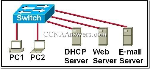 CCNA 1 Module 9 v3.1 (3)