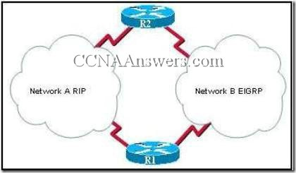 CCNA 2 Chapter 3 V4.0 Answers (1)