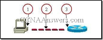 CCNA 2 Module 2 V3.1 Answers