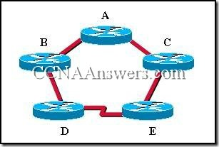 CCNA 2 Module 4 V3.1 Answers (3)