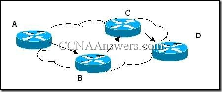 CCNA 2 Module 4 V3.1 Answers (5)
