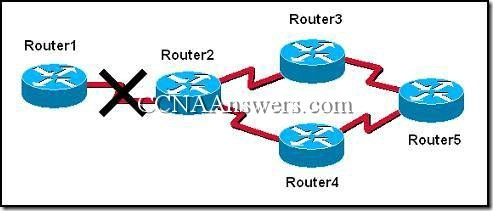 CCNA 2 Module 7 V3.1 Answers (1)