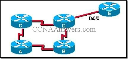 CCNA 2 Module 7 V3.1 Answers (6)