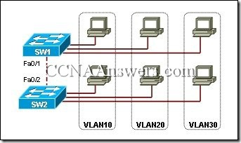 CCNA 3 Chapter 3 (4)