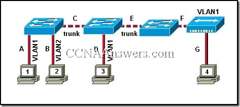 CCNA 3 Chapter 3 (7)