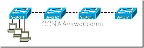 CCNA 3 Chapter 4 V4.0 Answers (3)