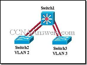 CCNA 3 Final Exam Answers V3.1 (11)