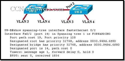 CCNA 3 Final Exam Answers V3.1 (18)
