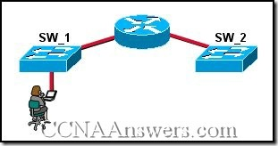 CCNA 3 Final Exam Answers V3.1 (24)