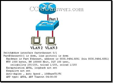 CCNA 3 Final Exam Answers V3.1 (5)