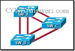 CCNA 3 Final Exam Answers V3.1 (8)