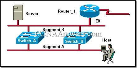 CCNA 3 Module 7 V3.1 Answers (1)