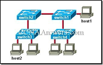 CCNA 3 Module 7 V3.1 Answers